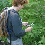 Plant app IDs are on the way, but not quite yet....would far rather have live human IDing