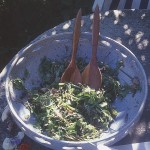 "Only two pictures of the ""half-eaten"" 2001 salad have been found so far!"