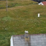 View from Skomvær Lighthouse - flower heads of Angelica sylvestris / Sløke can be seen scattered around