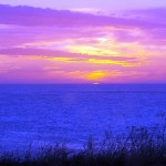 My last sunrise on Skomvær for some time from my bedroom