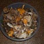 It's been very dry with frosts for a week and reports were that there wasn't much in the way of fungi in the woods, but after 1 hour walking there was one small area with a lot of hedgehog fungus, winter chantarelle and chantarelle...