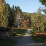 The arboretum...