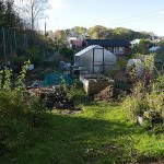 Tone Lise's garden is sadly far and above the most productive garden here, most people growing no food at all....