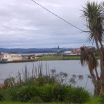 Riverton with cabbage tree (Cordyline) on the right