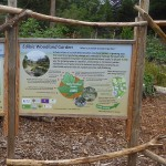 You can read these beautifully made interpretive boards at higher resolutuion here: http://www.findhornhinterland.org/ecology/edible-woodland-garden/