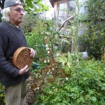 His garden is a fantastic ecological oasis in the middle of Findhorn which otherwise struck me as mostly rather sterile...Craig is aware of this and said that he wished they could turn back the clock and replant Findhorn with useful and edible trees etc.