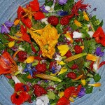 Salad with Orychophragma violacea flowers!