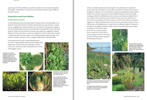 From my book...two of the 10 pages devoted to sow thistles, a picture of the Edimental sow thistle was also included!