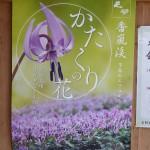 Katakuri poster