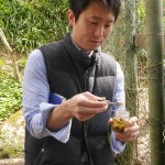 Masashi Fujiwara - do you know which wild plant you are sampling in these three pictures? Fuki, I think?