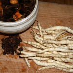 Soaking dried wild fungi, chufa and skirret roots