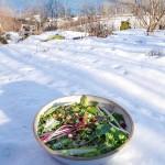 The 140+ salad
