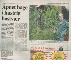Habby_Aug04_Malvikbladet