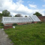 There's a wonderful sunken greenhouse in the walled garden