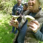 Susan found some St. George's Mushrooms, although a bit old!