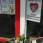 Wandering around Alton with my host Sheila John, a charity shop with a Hosta plant for sale...