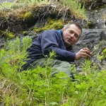 Fjellgeit Jarle Tronstad with roseroot (Rhodiola rosea)