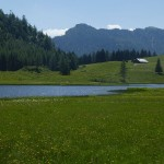 Seewardsee.....23C in the water, there's nothing like swimming with yellow water lily maidens in an alpine lake! :)