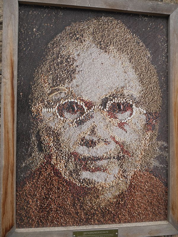 Seed art at the gate!