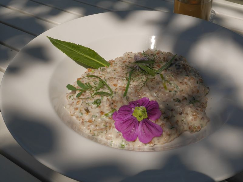 Lunch: risotto with an old grain! Did they make a special effort for me?