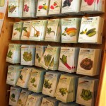 Arch Noah seed packets in the shop