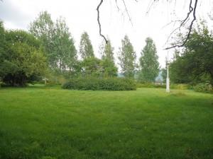 Dette området kan bli aktuelt å plante en skogshage og, bakerst, et område med tradisjonelle norske grønnsaker (Plantearven)