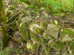 En stein mur i vest