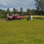 We stopped in Stiklestad on a farm which had been run organically since about 1990 to pick up horse muck for the perennial garden we were to create in the evening!