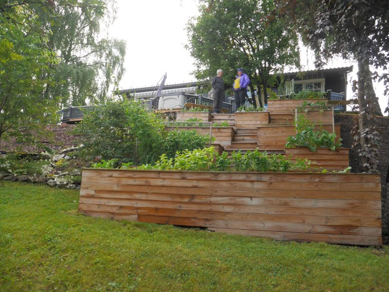 Utilising the space on a rocky slope to growing veggies