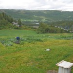We popped in to Bente's CSA (andelsbruk) to collect some veggies for dinner