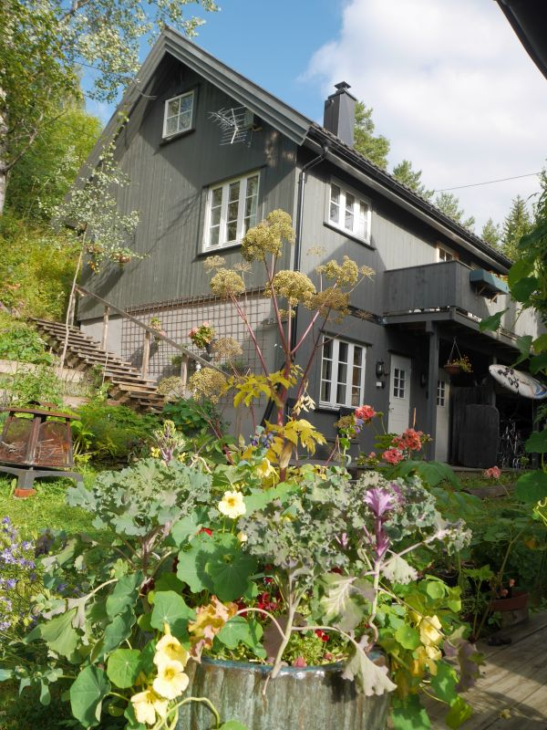 My host  Bente Brenna in Valdres Sopp og Nyttevekstforbund rents out rooms on her property right in the middle of Fagernes!  Her garden contains a nice collection of Edimentals including Angelia archangelica (kvann)...one of which had the characters of Vossakvann (filled stems)