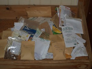 Today's packed seed - recycled packets!