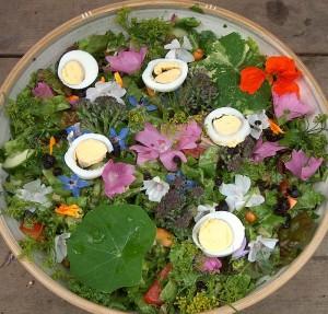 A renaissance salad