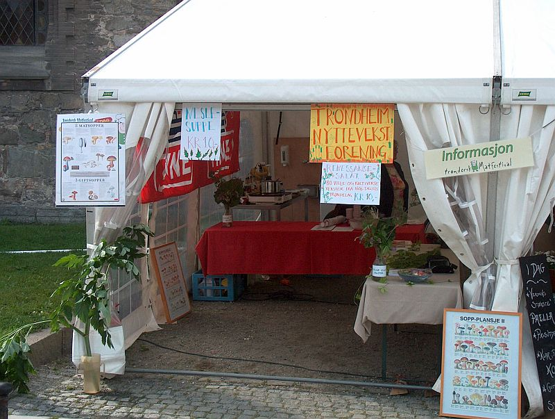 The stand of the Trondheim Useful Plants Society (Nyttevekstforening)