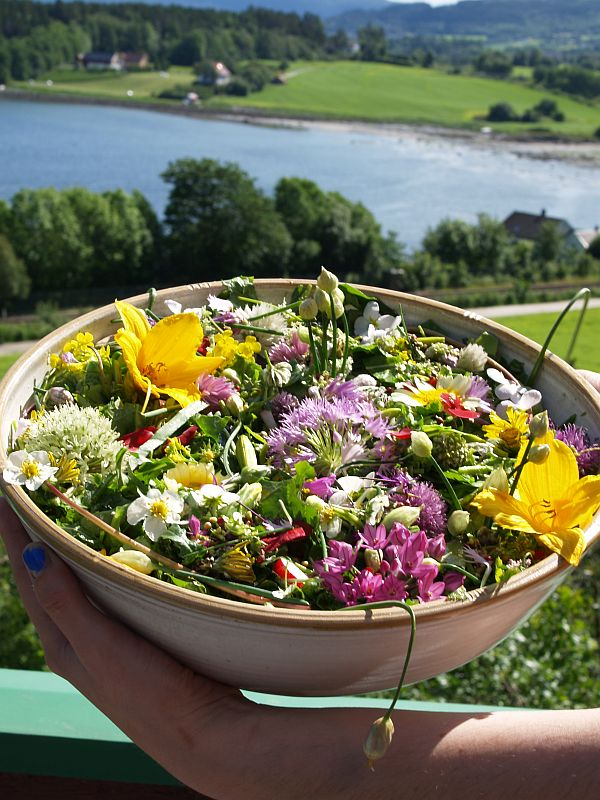 Salad of the day had 106 different plants, 76% of which were perennials....