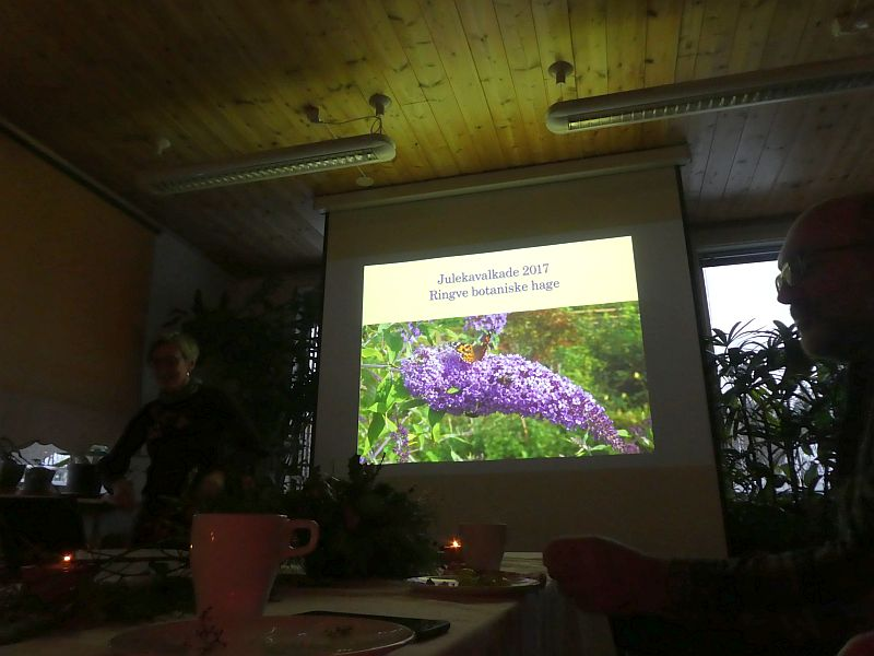 At the department Xmas get-together leader of the garden Vibekke gave a nice presentation of the year