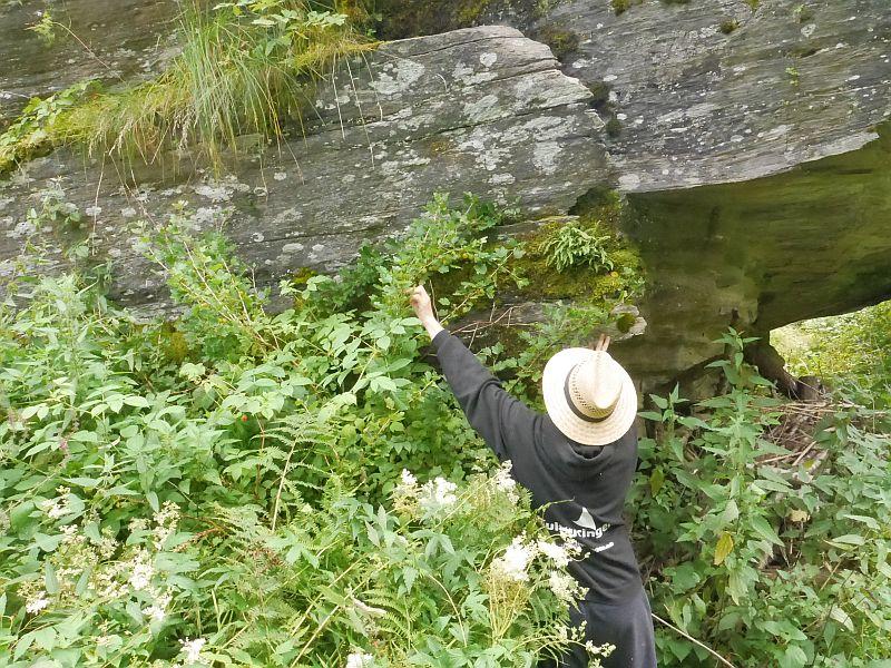 Rock gardening #2