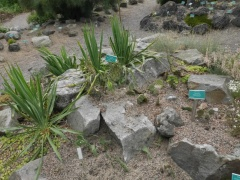 1080 P1040852 (Kopier) -- <p>
