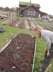 -- <p>