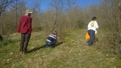 18 -- Species rich grassland with Anemone pavonina