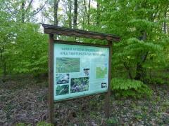 P1030416 -- Marina Reka nature reserve