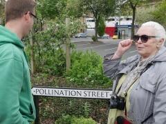 P1410265 -- Pollination Street