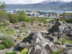 Wonderful rock gardens and view