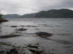 Grønsfjord