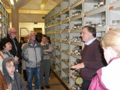 Economic Botany collection -- In the Economic Botany collection