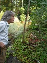 Arthur Lee Jacobsen in his garden -- Arthur Lee Jacobsen in his garden