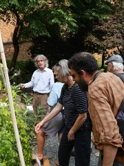 From the guided walk at the medicinal garden -- Arthur Lee Jacobson and I lead a guided walk in the University of Washington medicinal garden. I talked about several of the plants which are in my book!