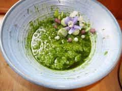 Allium zebdanense in pesto -- Allium zebdanense in pesto