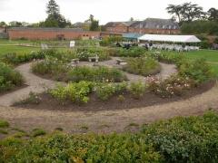Rose garden -- Rose garden