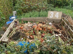 Brian's compost heap -- Brian's compost heap